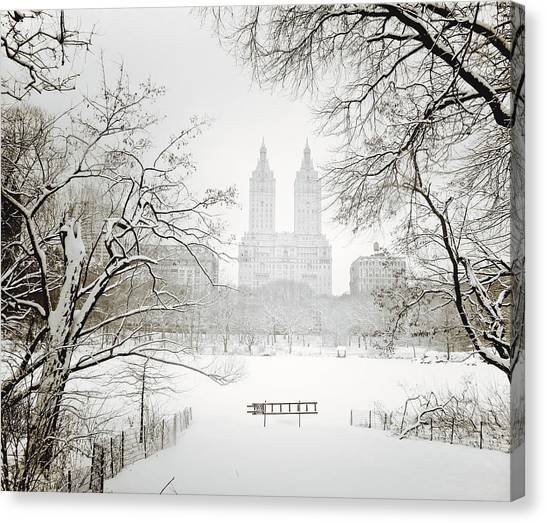 Central park winter canvas print through winter trees central park new york city