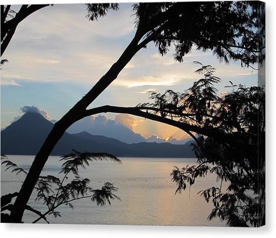 Volcanoes Canvas Print - View Through The Branches by Josias Tomas