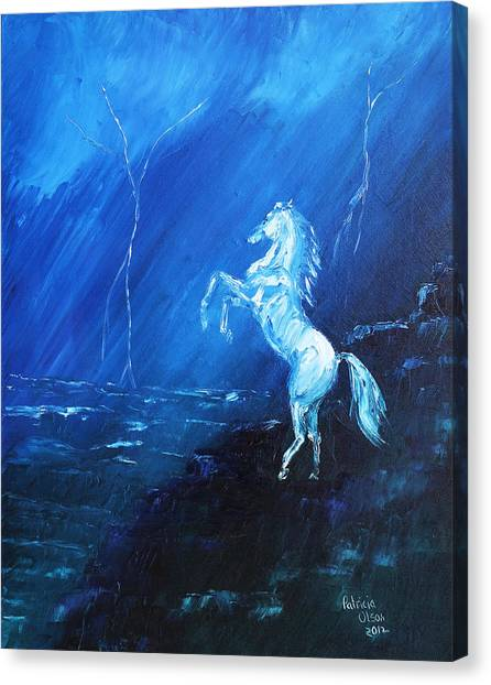 Thunder And Lightning Canvas Print