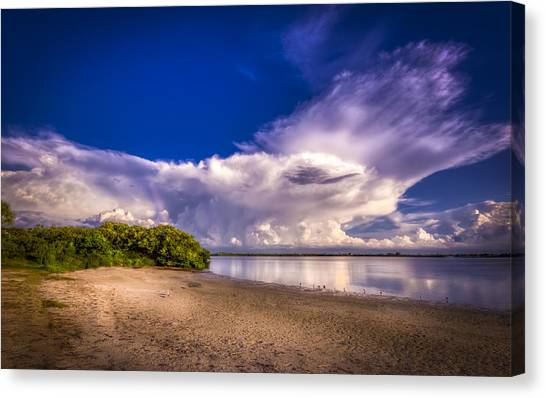 Tampa Bay Rays Canvas Print - Thunder Head Coming by Marvin Spates