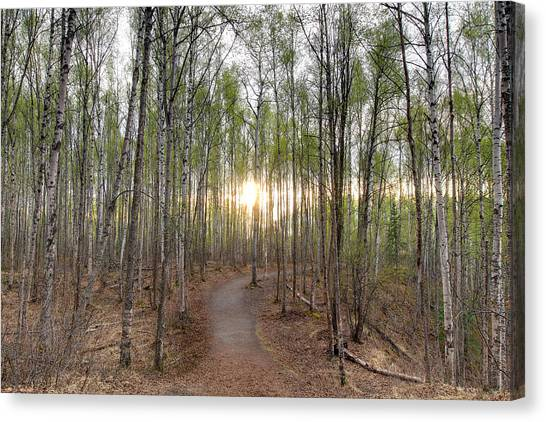 Thunderbird Trail Canvas Print