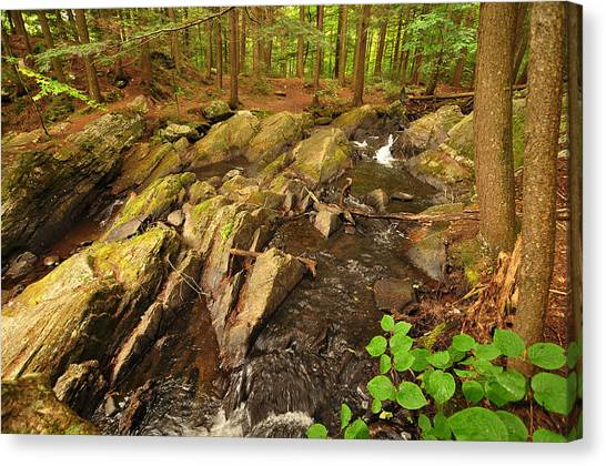 Thundering Brook Falls Vermont Canvas Print