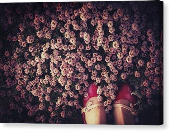 Thyme Carpet Canvas Print by Takako Fukaya