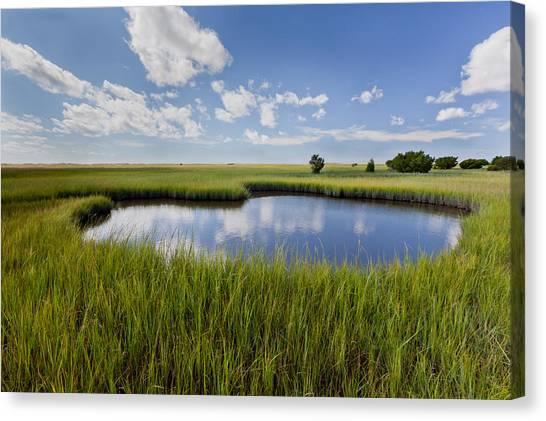 Tidal Pool Image Art Canvas Print