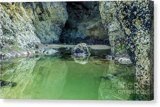 Tidepool Shades Of Green At Sunrise Canvas Print