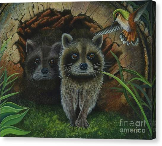 Tiffany And Raccoons Canvas Print