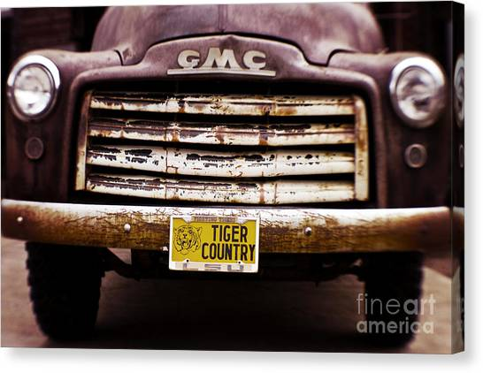 Sec Canvas Print - Tiger Country - Purple And Old by Scott Pellegrin