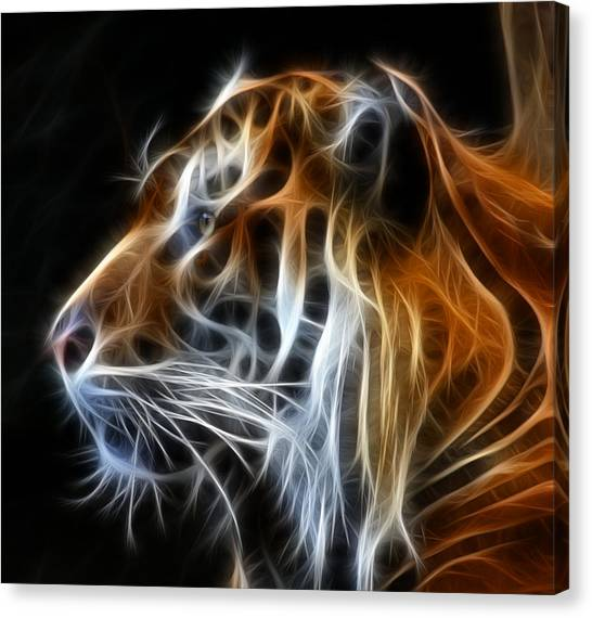 Tiger Fractal Canvas Print