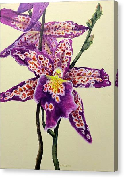 Tiger Orchid Canvas Print