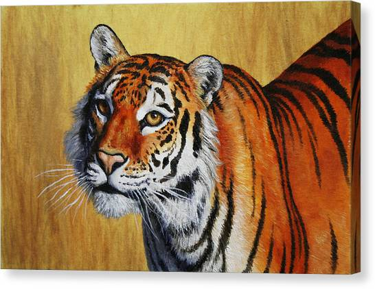 Siberian Canvas Print - Tiger Portrait by Crista Forest