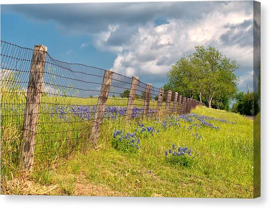 Tilted Fence Canvas Print