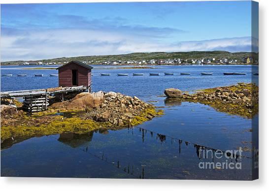 Newfoundland And Labrador Canvas Print - Tilting Harbour.. by Nina Stavlund