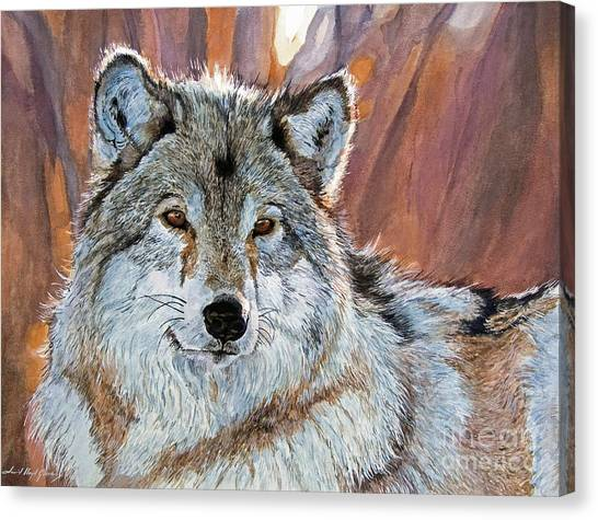 Timber Wolf Canvas Print by David Lloyd Glover