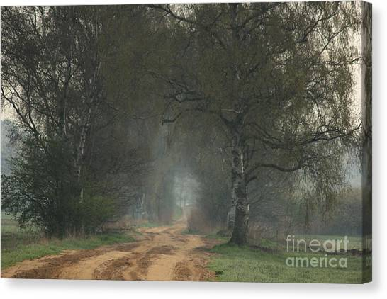 Time For Good Shoes In The Nature Canvas Print