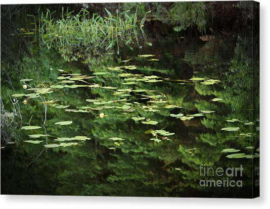Time For Reflection Canvas Print