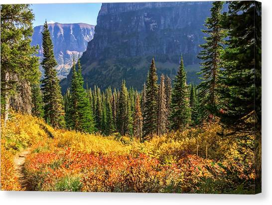 Timeless Colors Of Nature Canvas Print by Rohit Nair