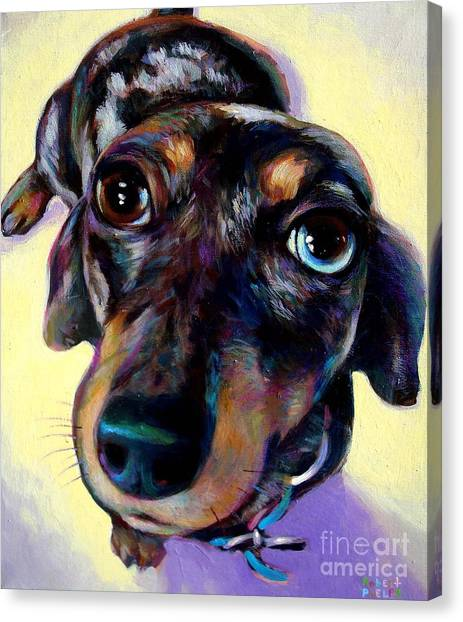 Tink  Canvas Print