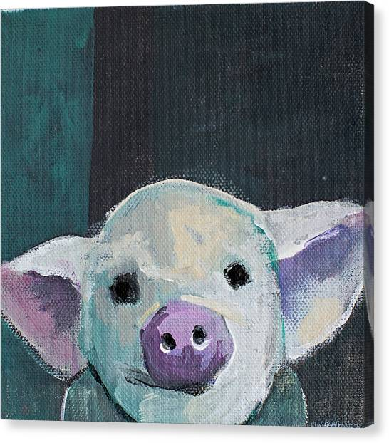 Head Canvas Print - Tiny Pig by Cathy Walters