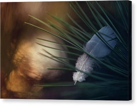 Grass Canvas Print - Tired Wings... by Dimitar Lazarov -