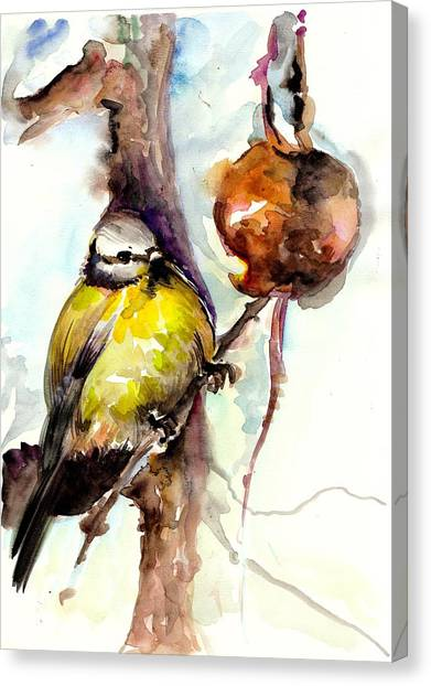Titmice Canvas Print - Titmouse Eating The Apple - Original Watercolor by Tiberiu Soos