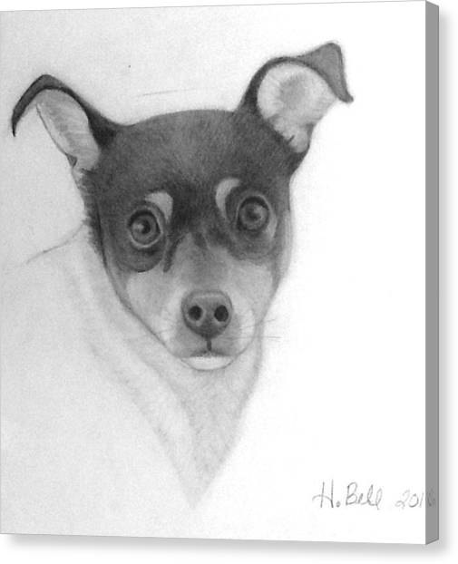Tizzy Canvas Print by Holly Bell
