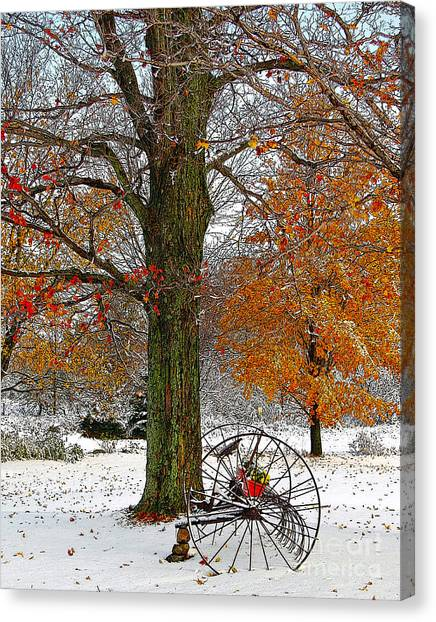 To Everything There Is A Season... Canvas Print