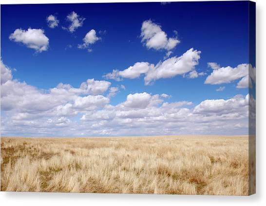 To The Horizon Canvas Print
