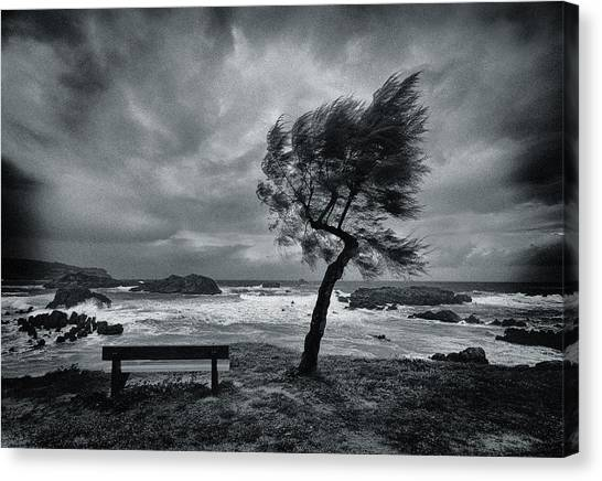 Desolation Canvas Print - Today No One by Mikel Lastra