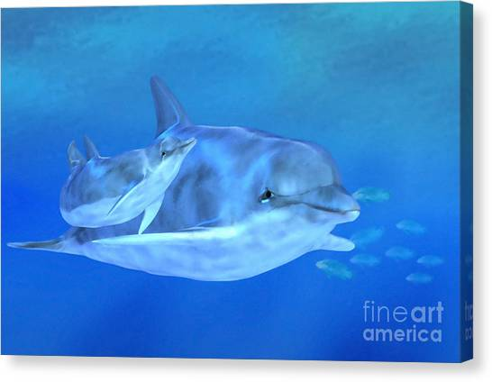 Flipper Canvas Print - Togetherness by John Edwards
