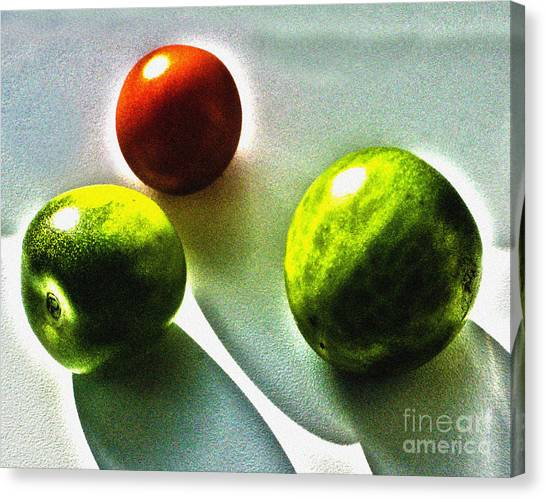 Tomato Phases Canvas Print by Kim Lessel