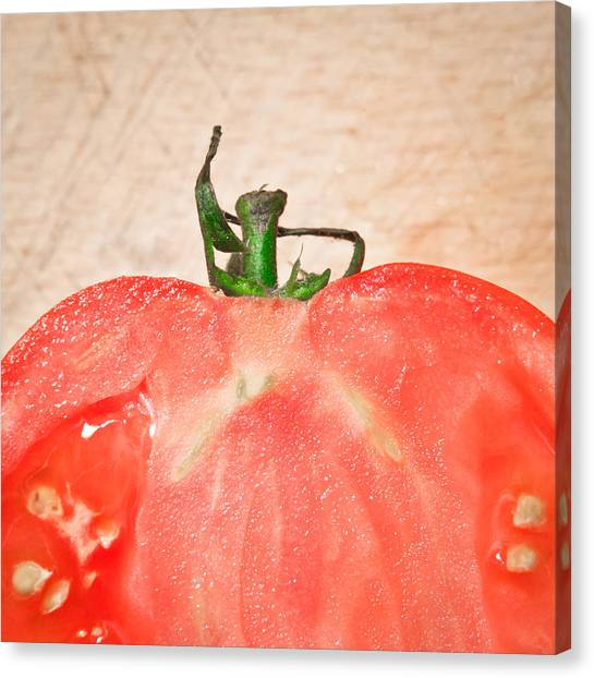 Fruit Canvas Print - Tomato by Tom Gowanlock