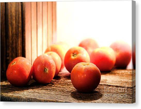 Produce Stand Canvas Print - Tomatoes In An Old Barn by Olivier Le Queinec