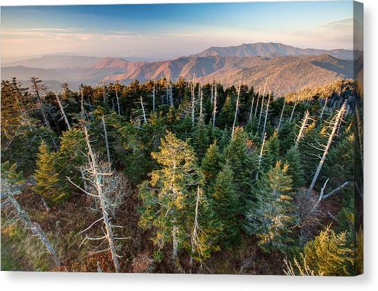 Top Of The Dome Canvas Print by Scott Moore