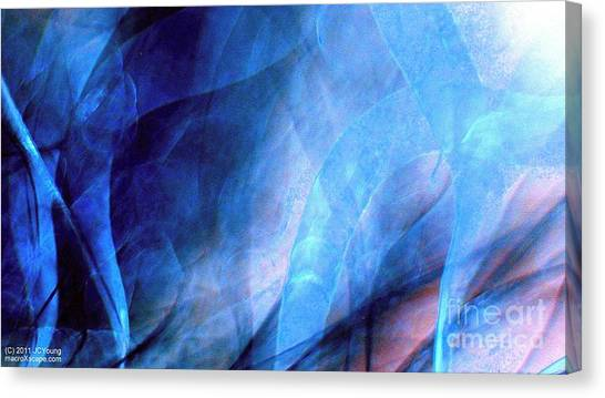 Tornado Alley Canvas Print by JCYoung MacroXscape
