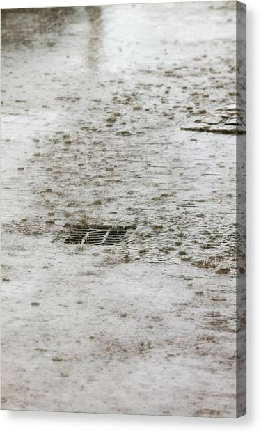 Global Warming Canvas Print - Torrential Rain by Ashley Cooper