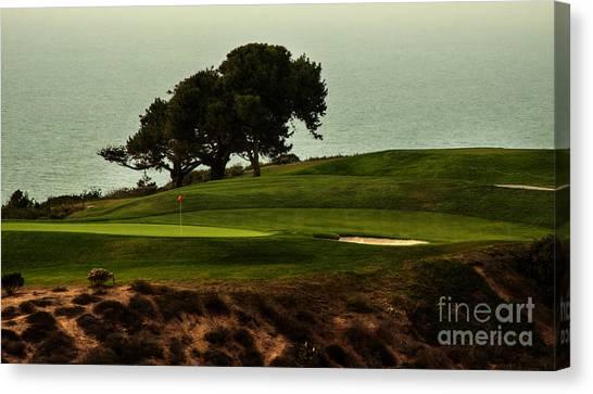 Torrey Pines Golfcourse Canvas Print