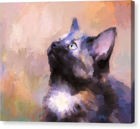 Tortoiseshell Kitten #3 Canvas Print
