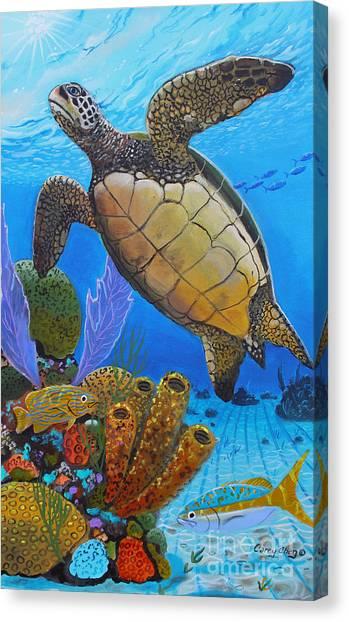 Bahamas Canvas Print - Tortuga by Carey Chen
