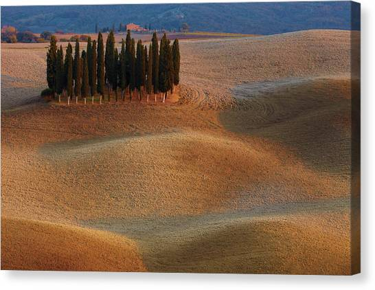 Countryside Canvas Print - Toscana by Vadim Balakin