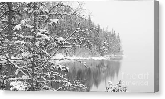 Touch Of Winter Canvas Print