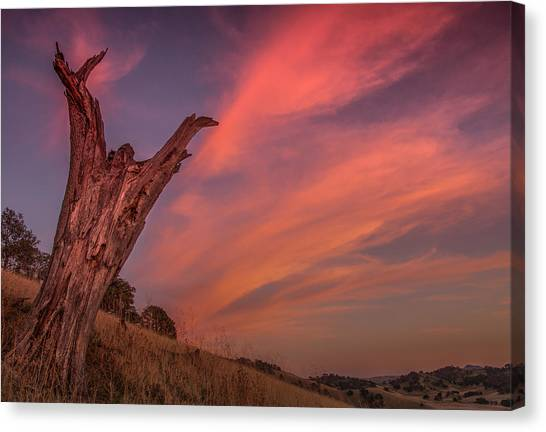 Contra Canvas Print - Touch The Sky by Marc Crumpler