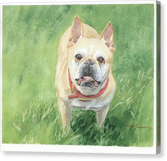 Tough Little Dog Watercolor Portrait Canvas Print by Mike Theuer