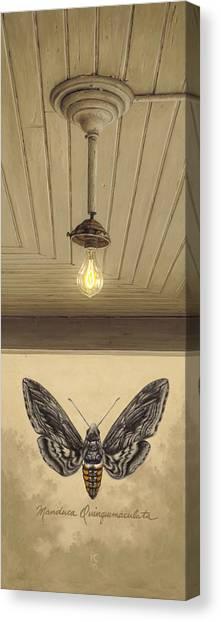 Toward The Light Canvas Print