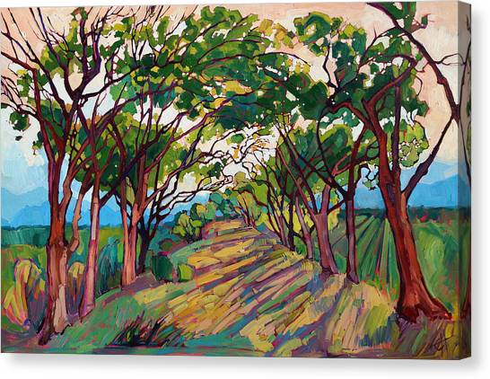 Trees Canvas Print - Towards Griffith by Erin Hanson