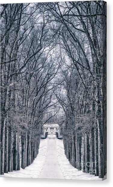 Brunch Canvas Print - Towards The Lonely Path Of Winter by Evelina Kremsdorf