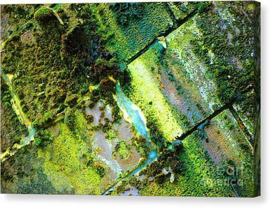 Toxic Moss Canvas Print
