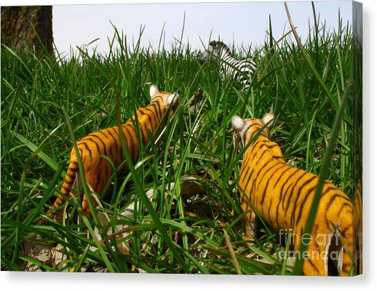 Toy Tiger Hunt Canvas Print