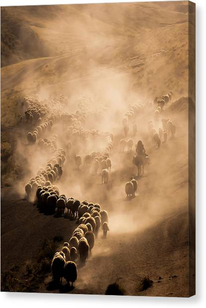 Dust Canvas Print - Tozlu Yolculuk by Murat Cacim