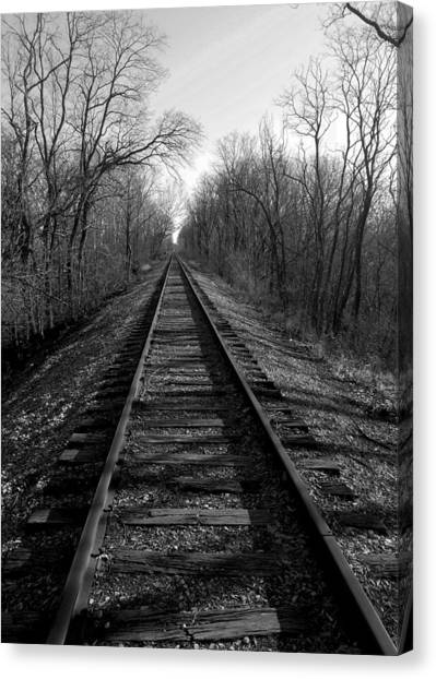 Tracks Canvas Print by Brian Amick