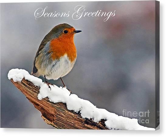 Traditional Christmas Robin Canvas Print